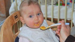 【生後6ヶ月】離乳食の進み具合・・・というか進まない具合。