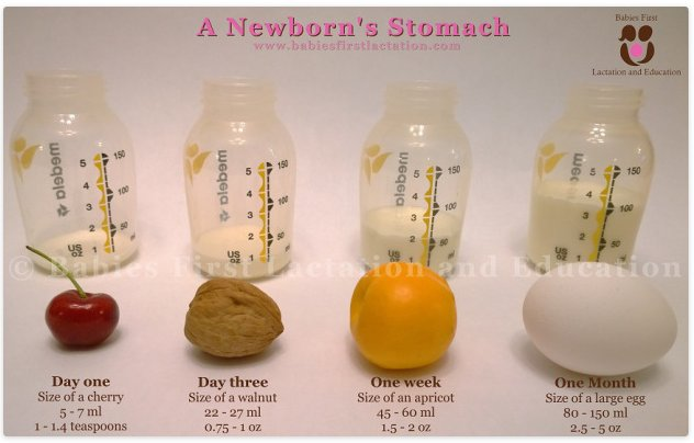 Newborn_Baby_Milk_Amount_Stomach